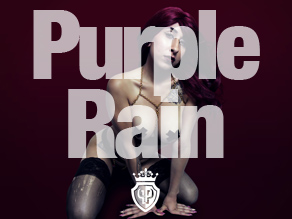 purple rain cover images