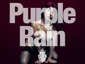 purple rain cover images