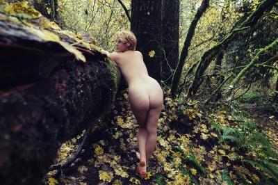 iris forest4 sized