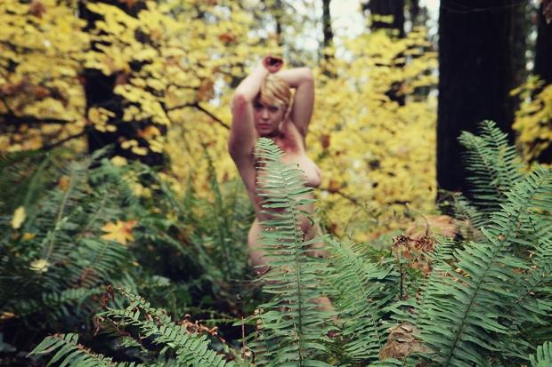 iris forest7 sized